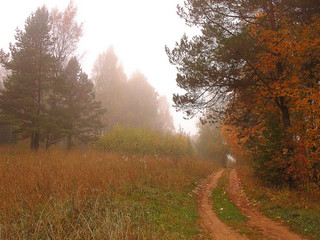 autumnal byway
