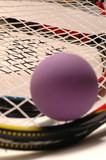 racquetball purple and racquet poster