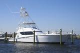 sport fishing yacht poster