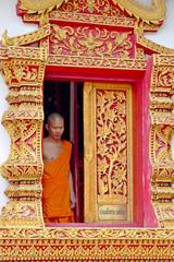 weary monk