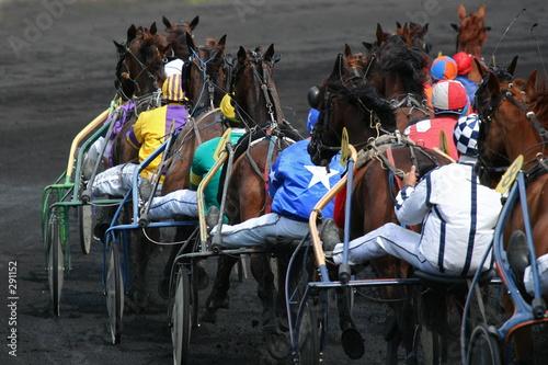 course de trot - 291152