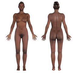 human anatomy - african female