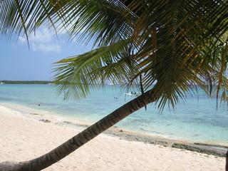 republique dominicaine - plage