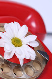 old telephone and white flower poster