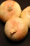 vidalia onions 16 poster