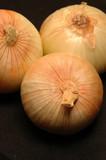vidalia onions 15 poster