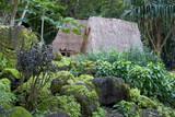 kauhale--traditional hawaiian living site poster