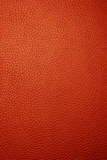 red leather - macro poster