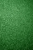 green leather - macro