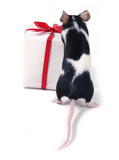 finding a present poster