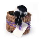 mouse in a basket with a card poster