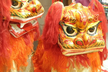 chinese celebration lion