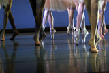 ballet legs poster