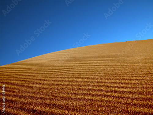 canvas print picture sand dunes in the desert.