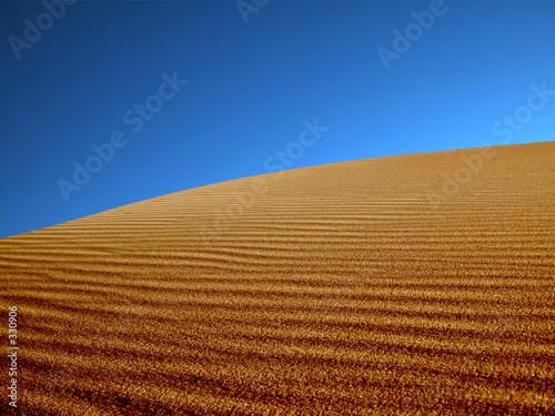 Leinwandbild Motiv sand dunes in the desert.
