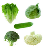 vegetable group poster