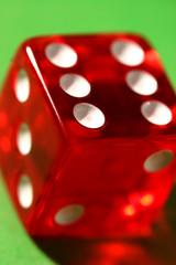 dice macro shot
