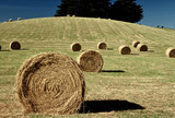 hay rolls poster