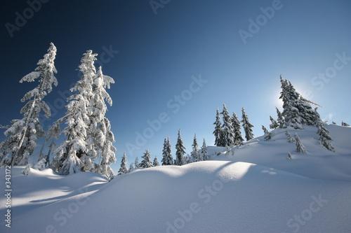 świeży śnieg
