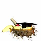 higher education nest egg poster