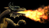 fire breathing dragon portrait poster