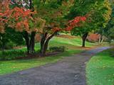pastel path poster