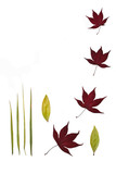leaf stillness poster