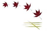 leaf simplicity poster