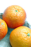 blood oranges in basket poster