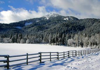 collier peak 15