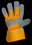 glove with path poster
