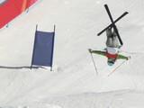 ski de bosses poster