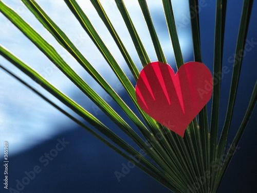 amour éventail