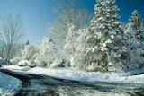 snow covered country road poster