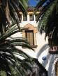 haus mit palmen in spanien