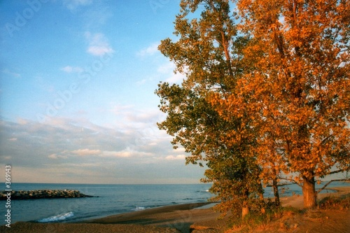 Papiers peints Grands Lacs autumn at lake erie - horizontal