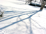 shadow on snow poster