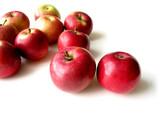 Fototapeta czerwony - zachwycający - Owoc