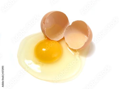 broken egg on white - 372951