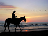 lone rider at sunset poster