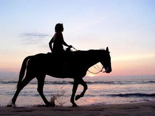 lone rider at sunset