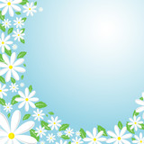daisy background poster