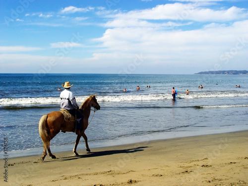 lone rider on the beach © Galina Barskaya