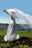 bride outdoors poster
