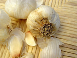 still life with garlic poster