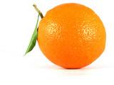 Fototapety orange