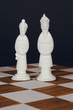 chinese chess set white king adn queen poster