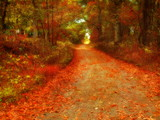 dreamy autumn poster