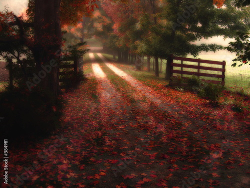 dreamy autumn path