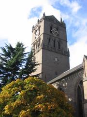 auld steeple in autumn, dundee
